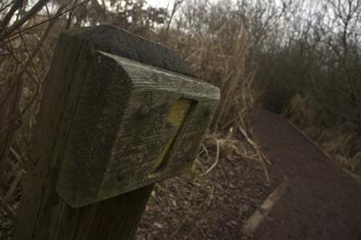 7-trail-angled400.jpg